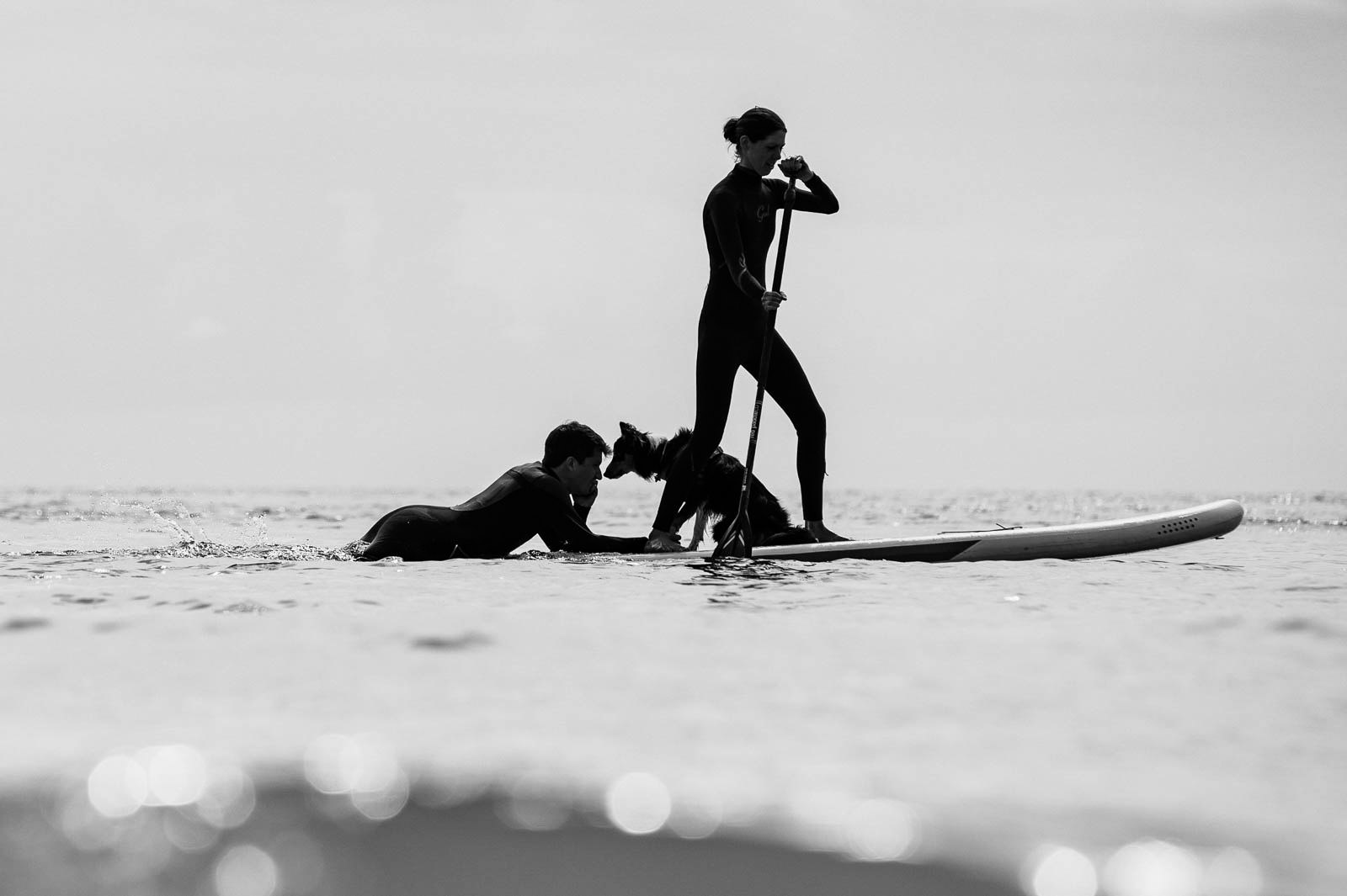 groom laying on the back of a paddleboard with his dog while a friend paddles them around Oxwich Bay, Gower, Swansea